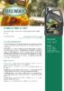 Техническое описание (TDS) Нефтесинтез М-8ДМ, М-10ДМ, М-14ДМ
