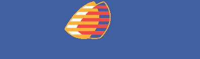 Логотип Q8 oils Plemium Lubricants