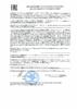 Декларация соответствия Mobil Pegasus Special CF (по 19.12.2020г.)