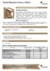 Техническое описание (TDS) Роснефть Magnum Cleantec 10W-40