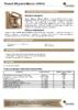 Техническое описание (TDS) Роснефть Magnum Maxtec 10W-40