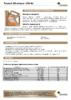 Техническое описание (TDS) Роснефть Maximum 10W-40
